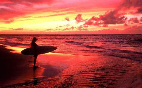 surf s surf s up deedeeflower wallpaper 22439863 fanpop