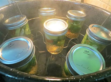can you juice hot peppers how to pickle hot peppers pickling recipes canning