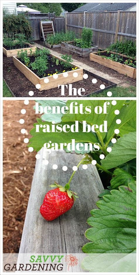 benefits of raised garden beds discover a few of the benefits of raised bed gardens