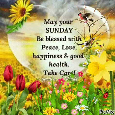 1 Sunday Sunday Co images of morning sunday gif siewalls co