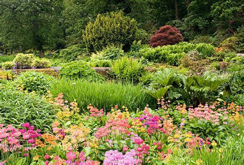 Gardening Keywords Image Gallery Harlowcarr