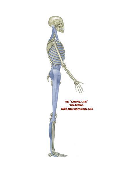 Anatomy Trains Torrent