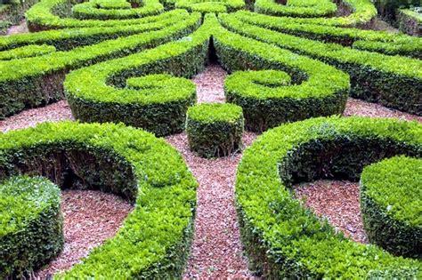 Colorful Bathroom Ideas Cut 22 Ideas For Garden Design Spring Buchsbaum Interior