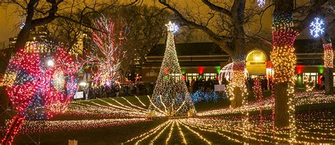 zoo lights chicago zoolights presented by comed and powershares qqq by