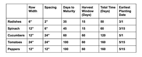 vegetable garden fertilizer chart vegetable garden fertilizer chart universalcouncil info