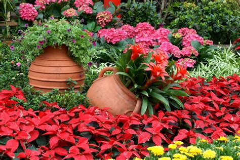 bien choisir les contenants pour vos plantes loisir jardin
