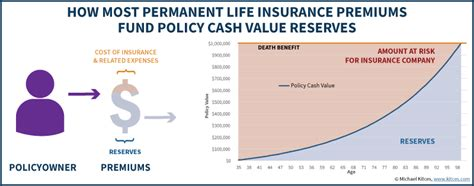 section 7702 life insurance life insurance policy loans tax rules and risks