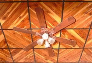 Wood Grain Ceiling Tiles All Wood Ceiling Tile Photos
