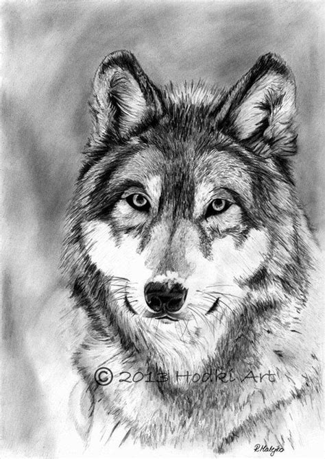 drawing and painting animals 25 best ideas about animal pencil drawings on 3d pencil drawings pencil art