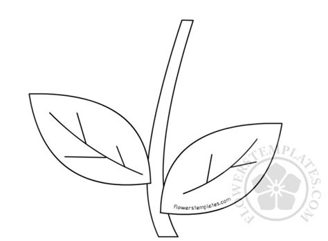 Galerry printable plant stems