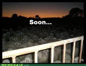 Soon Meme - soon whimsy dreams