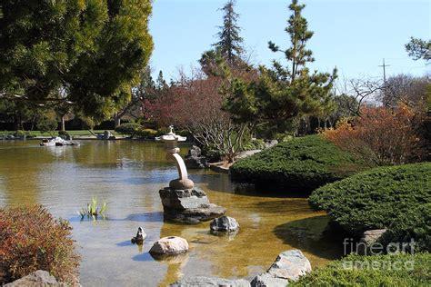 japanese friendship garden san jose california 7d12793