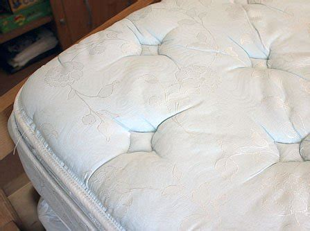 dust mites in bed how to clean and freshen your mattress one good thing by jillee