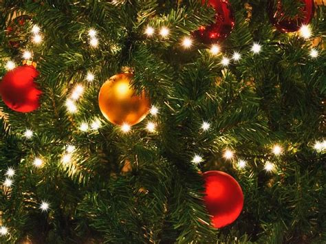 holiday light recycling in lakewood lakewood co patch