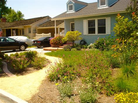 drought resistant landscaping ideas drought tolerant