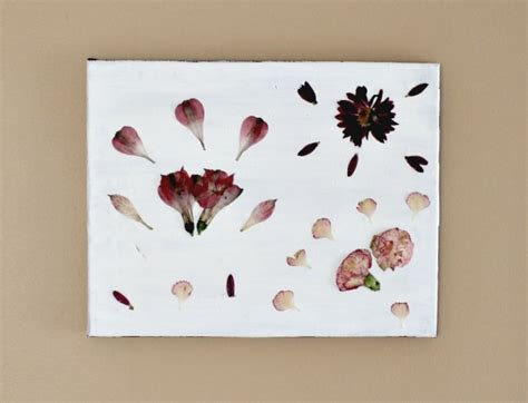 Paint Ideas Kitchen Diy Pressed Flowers Wall Art