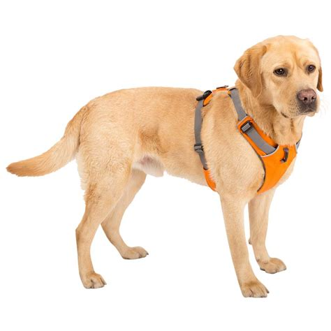 ruffwear harness ruffwear hundegeschirr quot front range harness quot alsa hundewelt