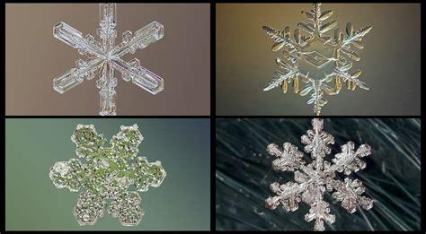 bajo el edredn spanish b00a58q9ru fotos asombrosas de copos de nieve bajo el microscopio spanish china org cn 中国最权威的西班牙语新闻网站