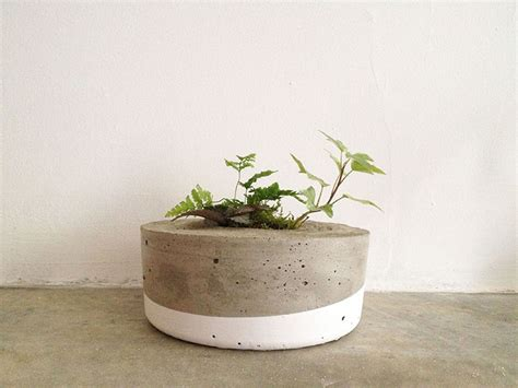 Make Cement Planters by Make Concrete Planters Givemakewrap