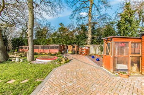 Pet Resort In The Gardens by Cattery In Poole Lytchett Royal Boarding Cattery