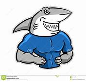 Image Gallery Muscle Shark