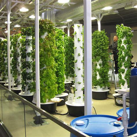 growing food    mainstream