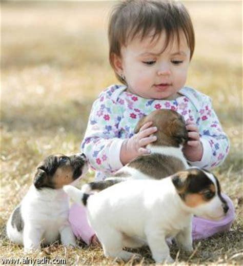 صور كلاب بوليسية منتديات عبير
