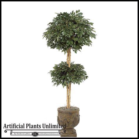 topiary trees indoor 6 sakaki topiary tree indoor