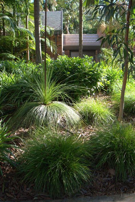 australian gardens ideas 25 best ideas about australian garden on