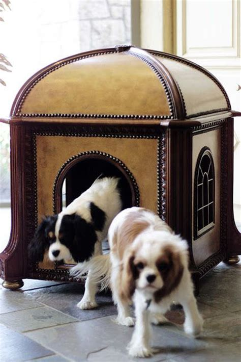 Small Dogs Inside Home 25 Cool Indoor Houses Home Design And Interior
