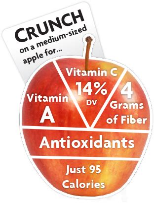 apple nutrition apple nutrition health and nutrition nutrition and facts