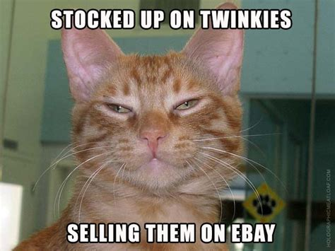 Twinie Cats twinkie cats holographic meatloaf the official of
