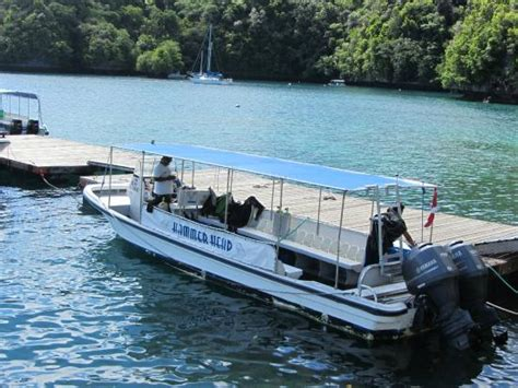 dive boat dive boat at dock picture of sam s tours palau koror