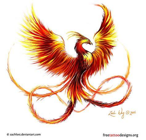 phoenix tattoo designs free phoenix tattoos 75 cool designs