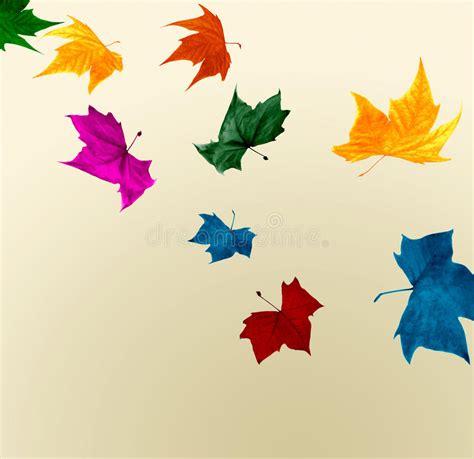 imagenes impactantes colores hojas de oto 241 o que caen en colores impactantes im 225 genes de