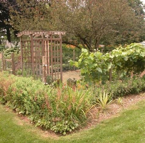 fall vegetable garden plans 17 best ideas about fall vegetable gardening on