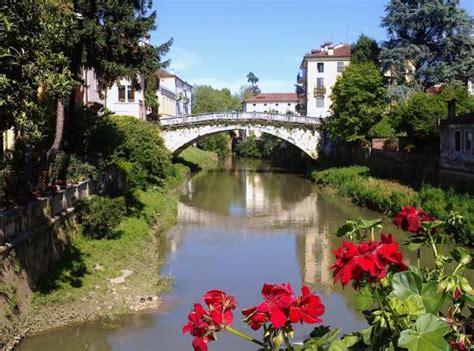 lioni da giardino economici angolo nascosto e romantico recensioni su ponte san