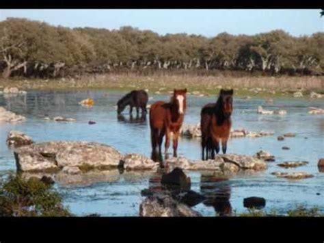 giara di gesturi ingresso la giara di gesturi tuili setzu e genoni i cavallini