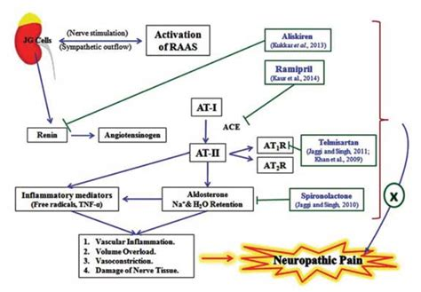raas system flowchart raas system flowchart flowchart in word