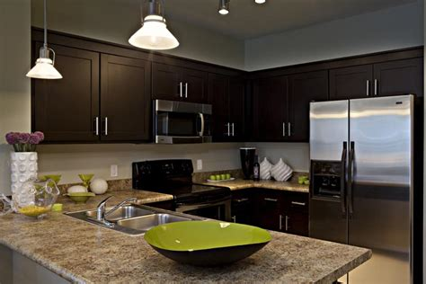 color espresso shaker wood kitchen bathroom cabinets best free home design idea inspiration applying the espresso kitchen cabinets in a modern kitchen
