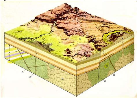 geologic block diagram oldest to youngest solved figure 1 is a block diagram of a hypothetical area