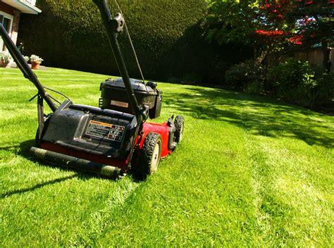 Lawn Care by Lawn Care Nature S Edge Landscapingnature S Edge Landscaping