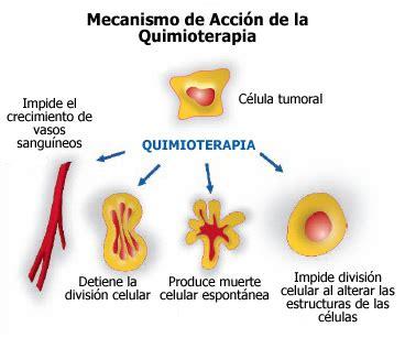 Detox Despues De Quimotherapy by Tratamientos Sistema Digestivo