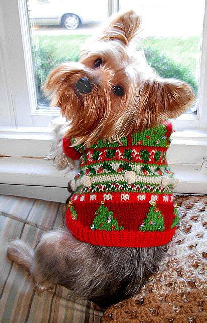 knitting pattern yorkshire terrier christmas trees pattern by my savannah cottage dog