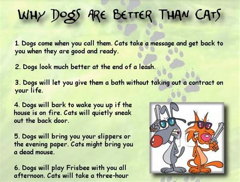 why dogs are better than cats motley dogs archive lists
