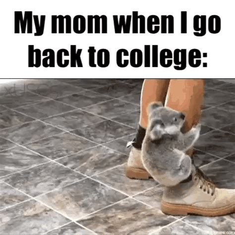 Back To College Meme - home memes com