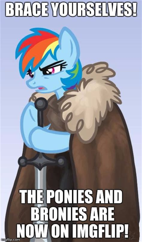 Bronies Meme - i say welcome to all the ponies and bronies imgflip