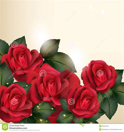 background design red rose beautiful vector background in vintage style with rose