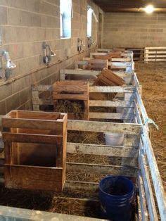 no waste goat feeder plans | hay manger plans | goats