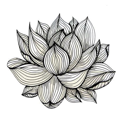 lotus pattern drawing lotus flower black and white clipart panda free